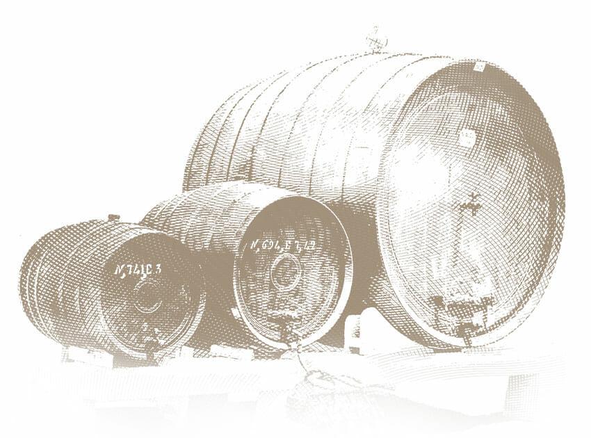 I vini della famiglia Bertani